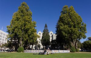 civic park